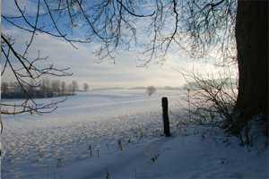 пейзаж в декабре месяце
