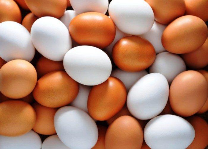 Связанные яйца фото сиськи