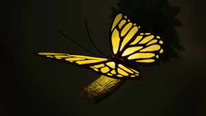 Yellow_Butterfly_Deco_Light_03