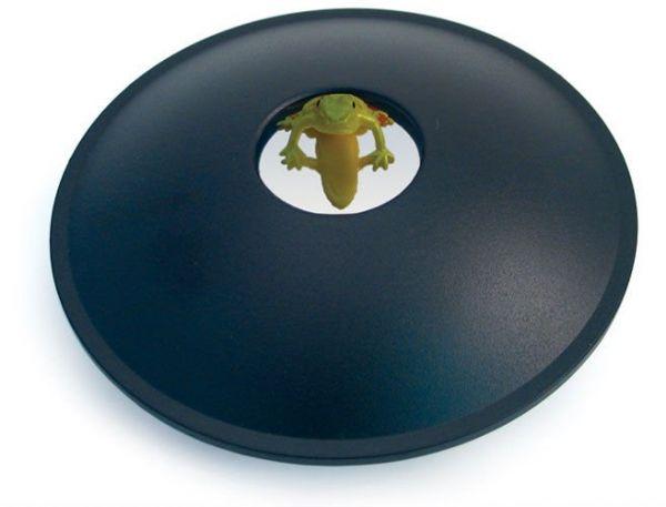 Лягушка в мираскопе
