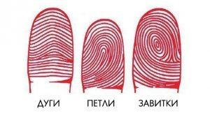 Узоры отпечатков пальцев говорят о характере человека.