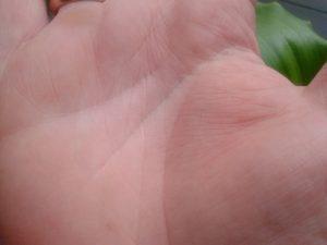 Денежный треугольник на руке
