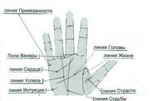 Линия привязанности на руке