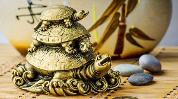 Черепахи по фен-шуй