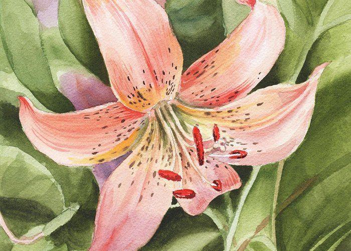 Приметы о лилиях