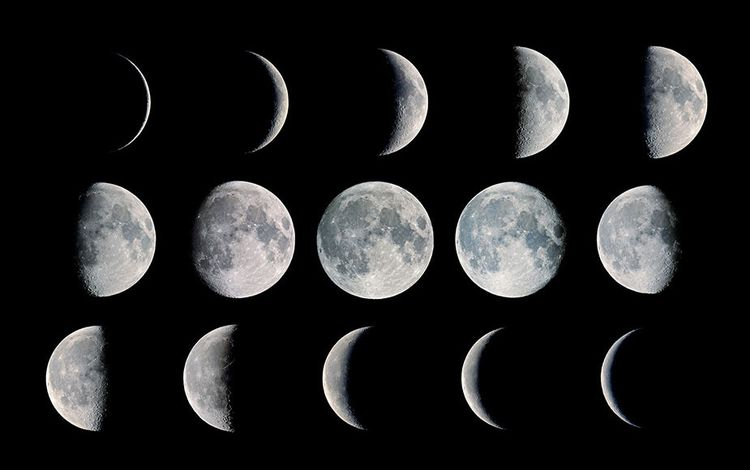 Лунный посевной календарь садовода и огородника на 2022 год